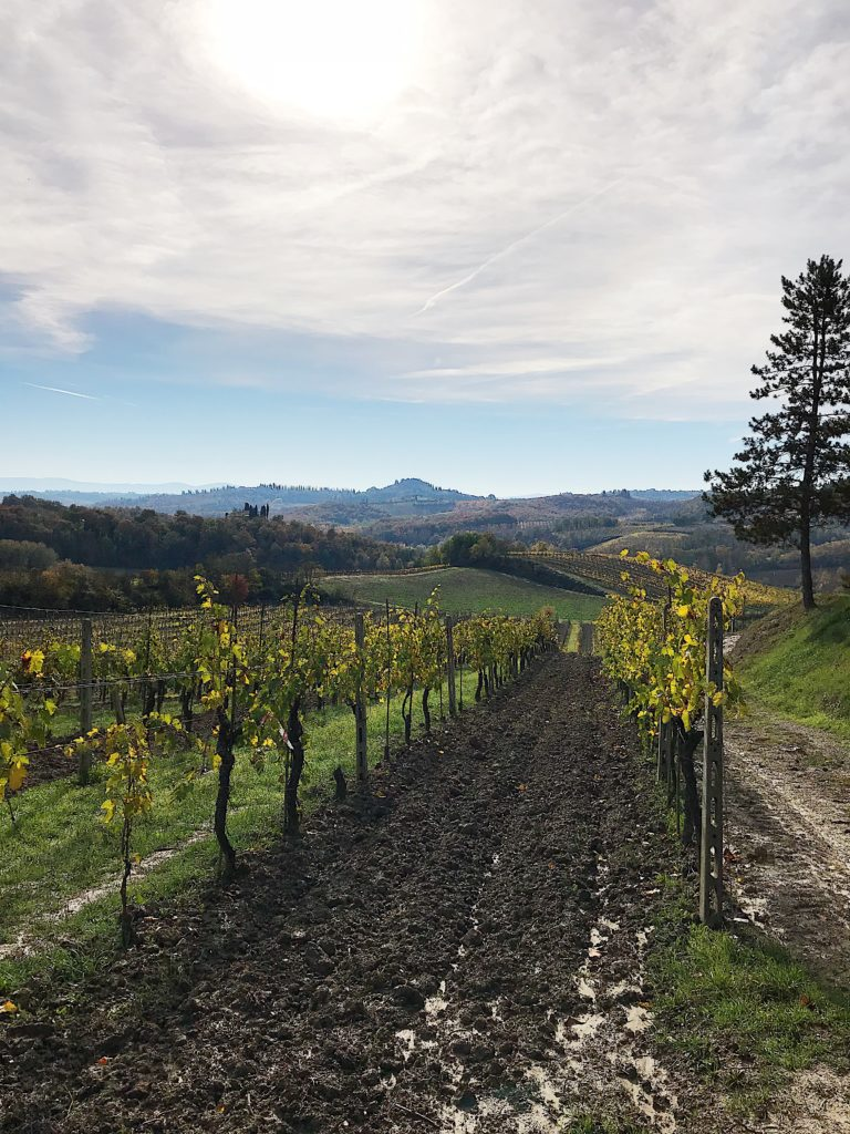 Favorites from our trip to Italy in November #italy #travel #florence #tuscany #italytravel